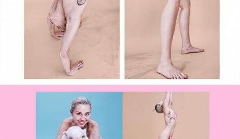 el desnudo de miley cyrus banner